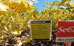 Embedded thumbnail for McLeod R2